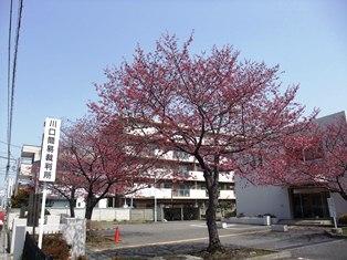 2012 神楽坂・靖国神社 005 リサイズ.jpg